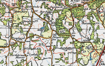 Old map of Forest Green in 1920