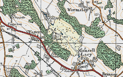 Old map of Bache Wood in 1920