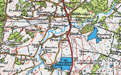 Old map of Frensham in 1919