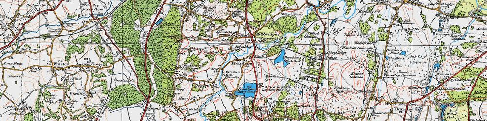 Old map of Frensham in 1919