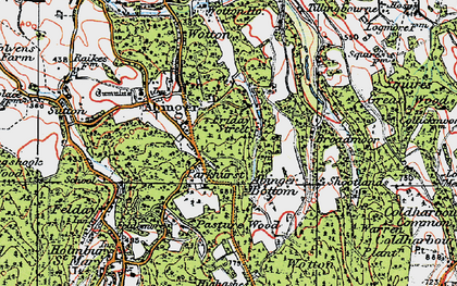Old map of Abinger Bottom in 1920