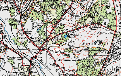 Old map of Frimley in 1919