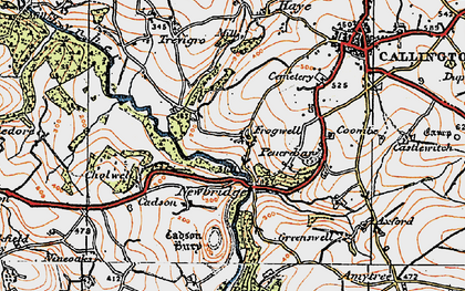 Old map of Frogwell in 1919
