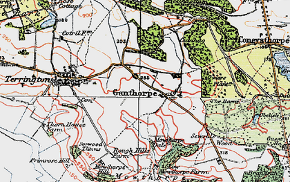 Old map of Thurtle Wood in 1924