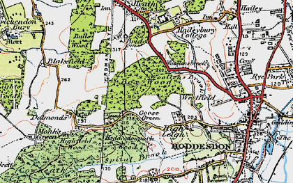 Old map of Goose Green in 1919
