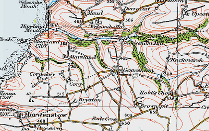 Old map of Gooseham in 1919