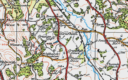 Old map of Wey-South Path in 1920