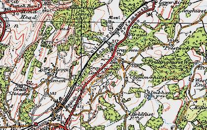 Old map of Weydown Common in 1920