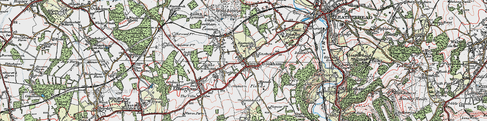 Old map of Great Bookham in 1920