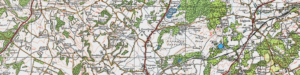 Old map of Woolmer Pond in 1919