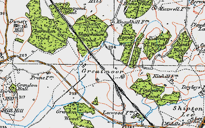 Old map of Balmore Wood in 1919