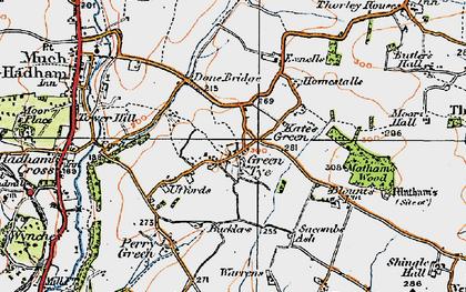 Old map of Green Tye in 1919