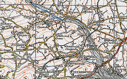 Old map of Greenwith Common in 1919