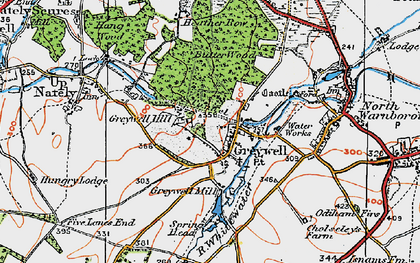 Old map of Greywell in 1919
