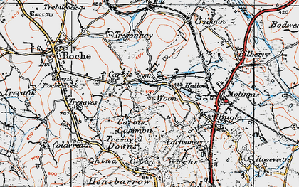 Old map of Hallew in 1919