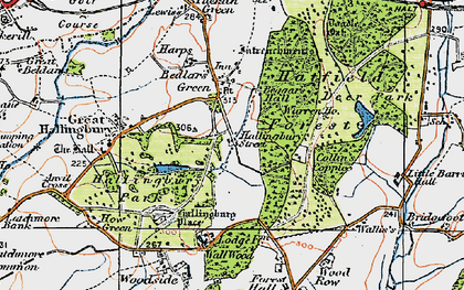Old map of Woods, The in 1919