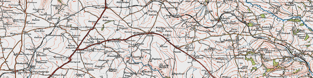 Old map of Wilsey Down in 1919