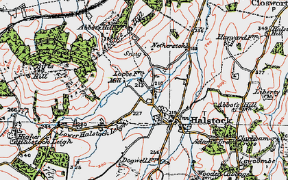 Old map of Halstock in 1919