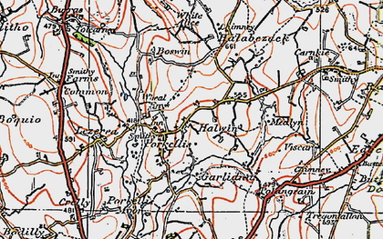 Old map of Halwin in 1919