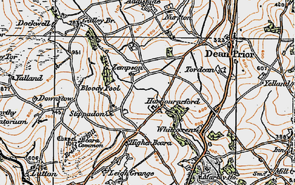 Old map of Zempson in 1919