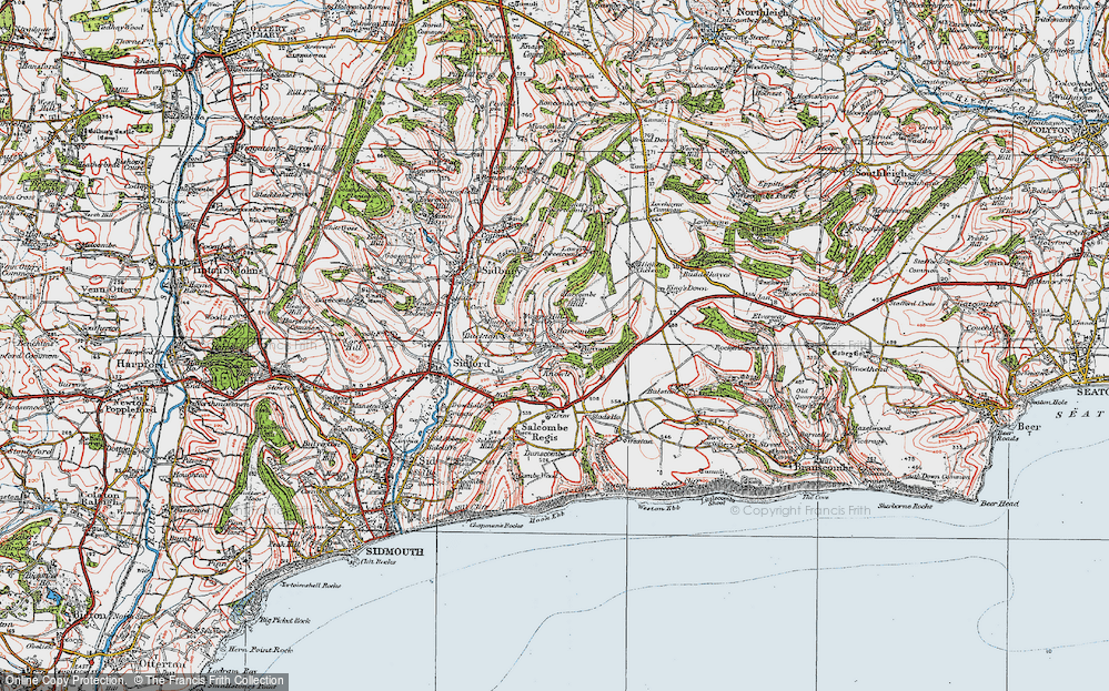 Old Map of Harcombe, 1919 in 1919