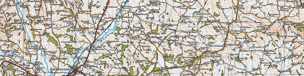 Old map of Hawkchurch in 1919