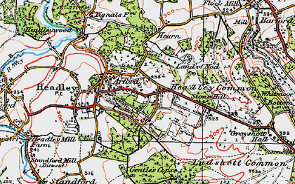 Old map of Headley Down in 1919