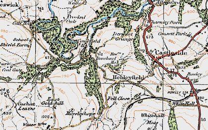 Old map of Whitehall Moss in 1925