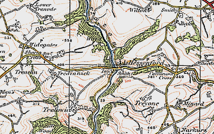 Old map of Bake Wood in 1919