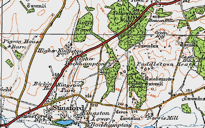 Old map of Higher Bockhampton in 1919