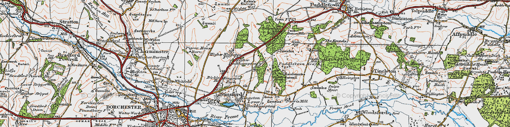 Old map of Yellowham Wood in 1919
