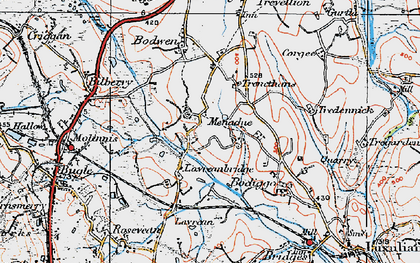 Old map of Higher Menadew in 1919