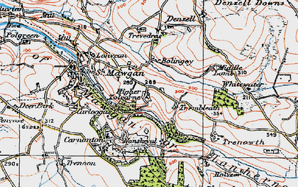 Old map of Higher Tolcarne in 1919