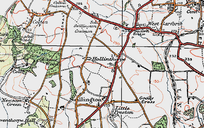 Old map of Avenue Wood in 1925