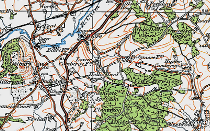 Old map of White Down Copse in 1919