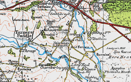 Old map of Yearlings Bottom in 1919