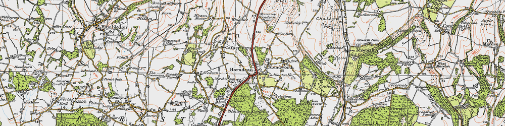 Old map of Horndean in 1919