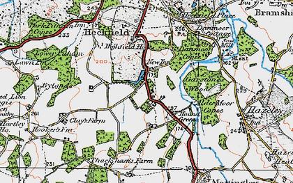Old map of Alder Moor Copse in 1919