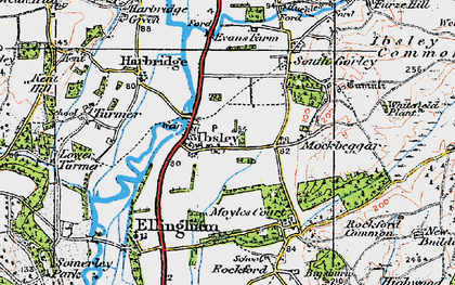 Old map of Ibsley in 1919