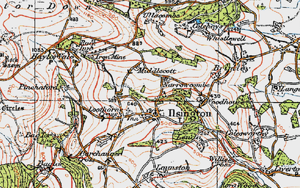 Old map of Ilsington in 1919
