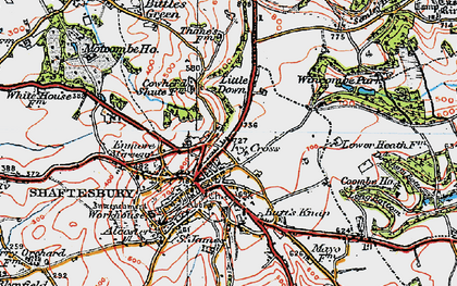 Old map of Wincombe Park in 1919