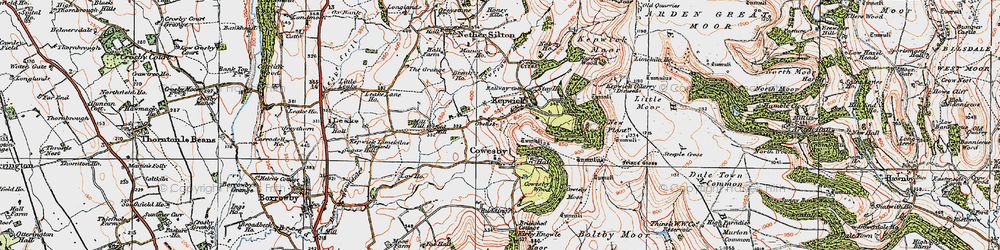 Old map of Whitestone Scar in 1925