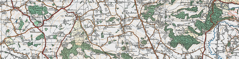 Old map of Wistaston in 1920