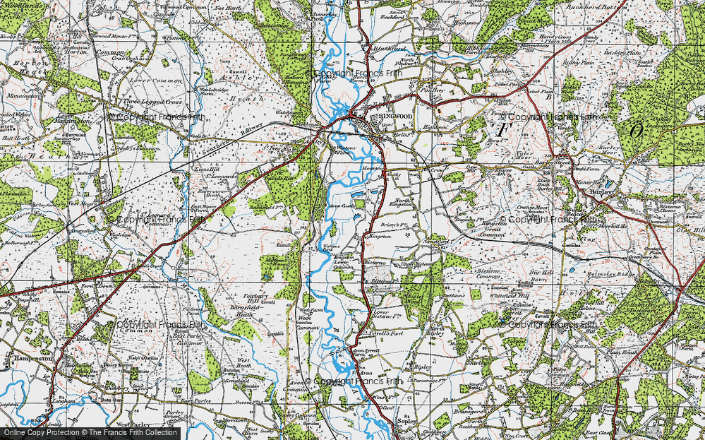 Old Map of Historic Map covering Leybrook Common in 1919