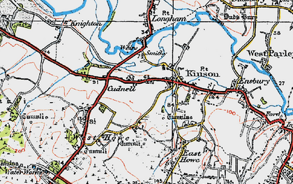 Old map of Kinson in 1919