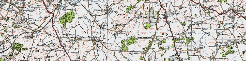 Old map of Whitfield Woods in 1919