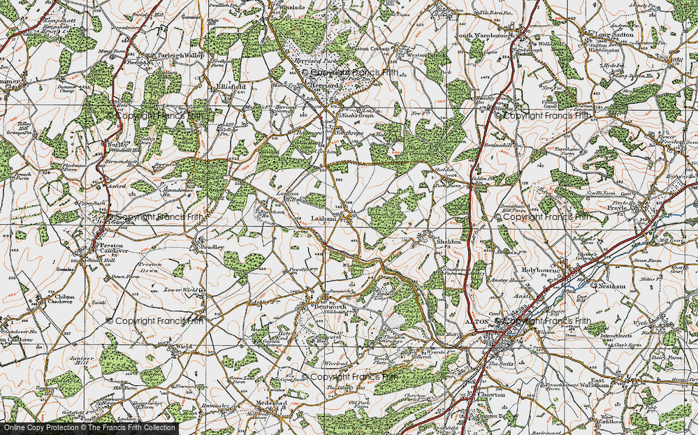 Old Map of Historic Map covering Lasham Wood in 1919