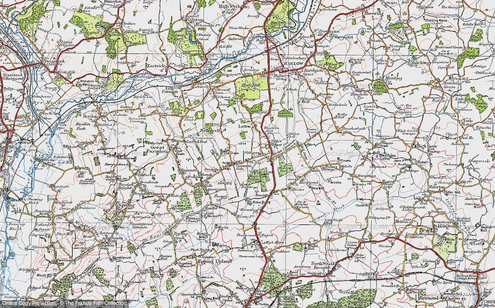 Old Map of Latton Bush, 1919 in 1919