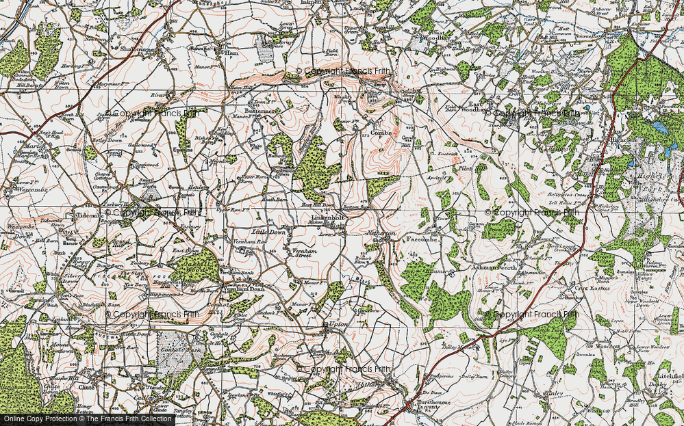 Old Map of Linkenholt, 1919 in 1919