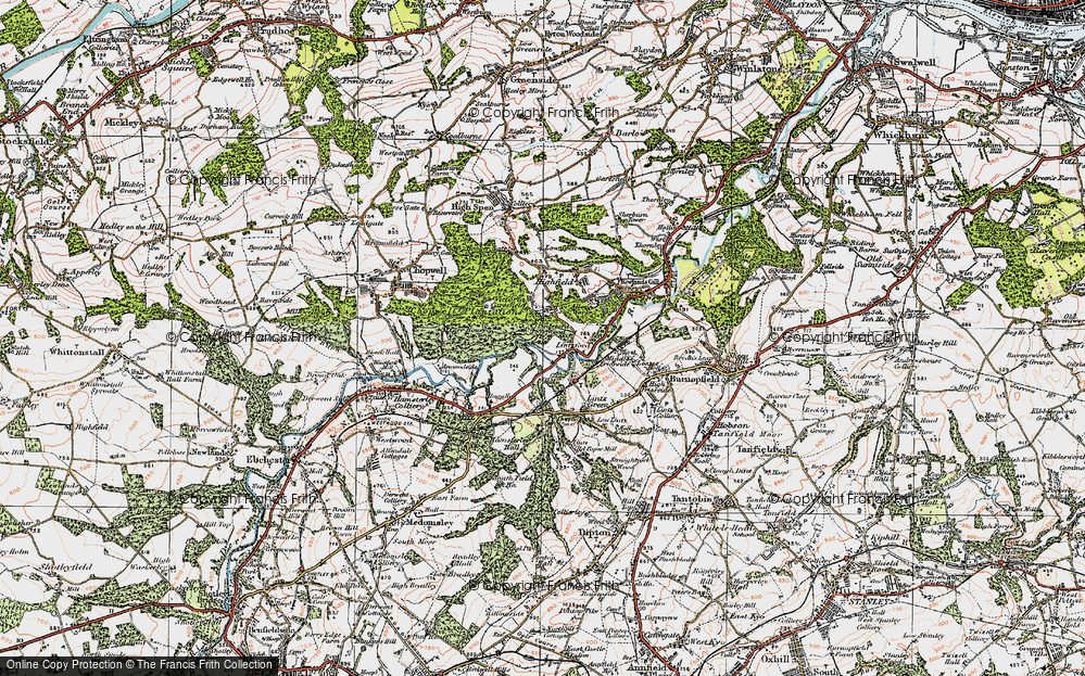 Old Map of Historic Map covering Lintzford Wood in 1925